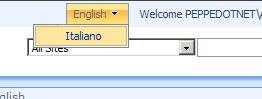 Variations change language menu